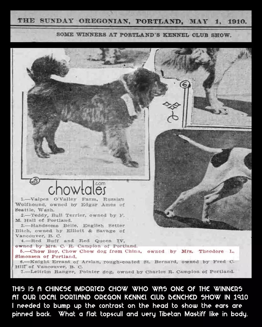 OREGONIAN MA1 1 1910 CHOW PHOTO