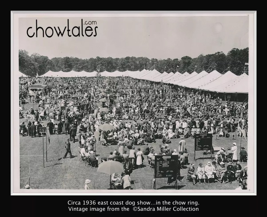 1936 RING FULL OF CHOWS (1 of 1)