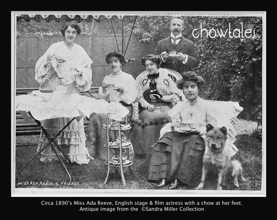 Miss Ada Reeve and Friends  Edwardian 1900 chow cat ladies man actress