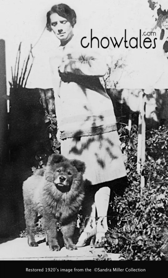1920'S LADY WITH HER CHOW PUPPY