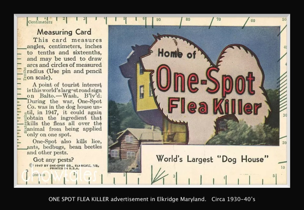 ONE SPOT flea killer postcard Moved to archive