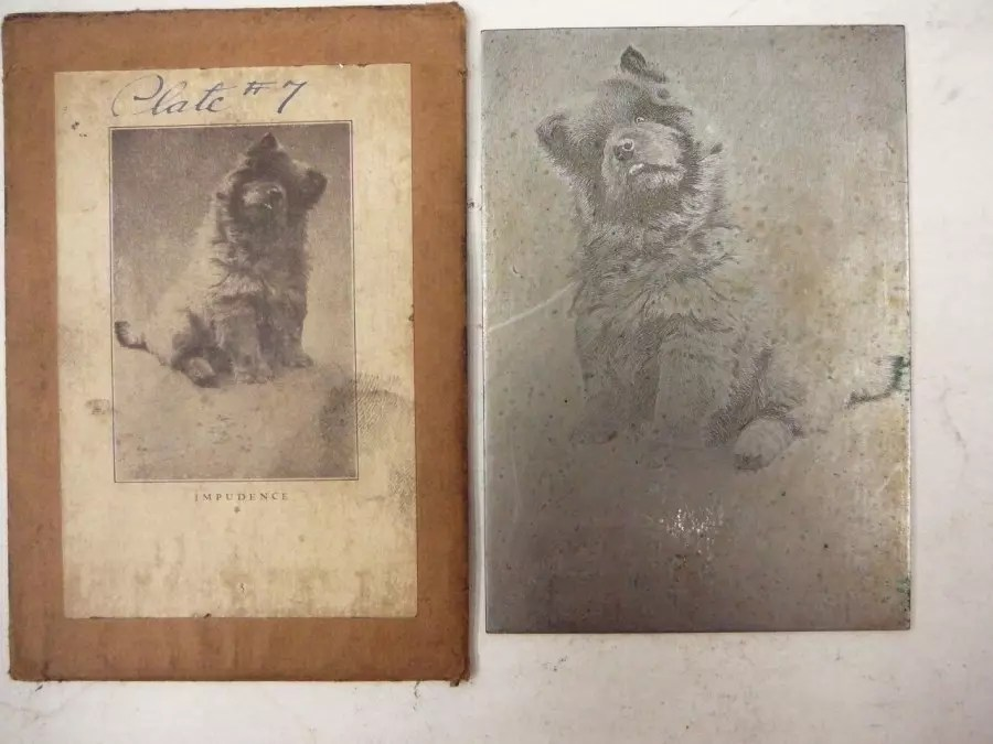 MORGAN DENNIS ORIGINAL ETCHING PLATE IMPUDENCE