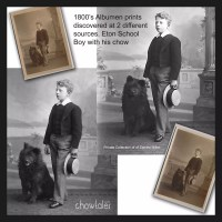 LATE 1800'S Eton Schoolboy and his chow – Rare set of albumen prints