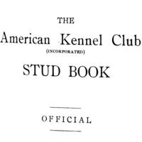 1907 AKC  Chow Stud Book entries