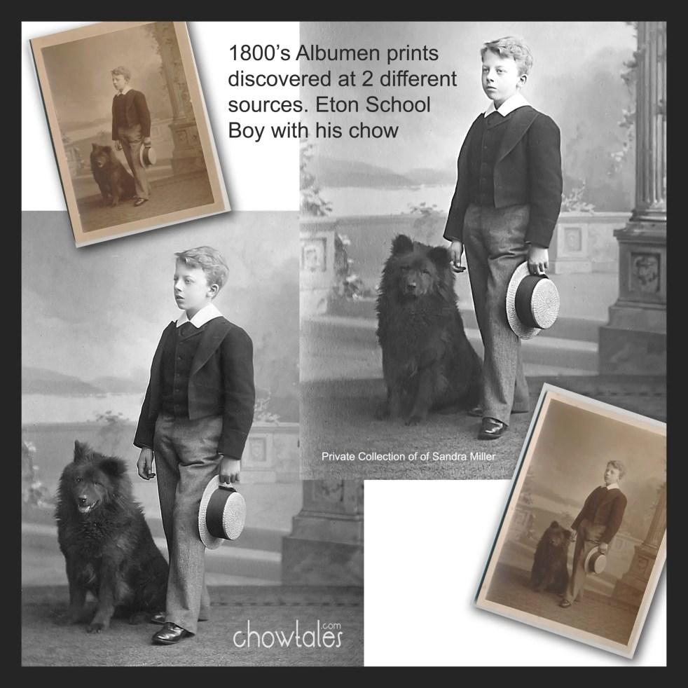Eton School boy collage.jpg 5526
