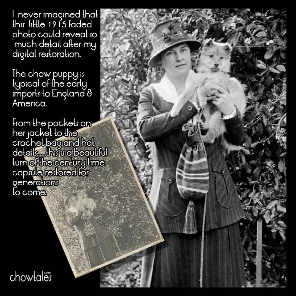 1914 Woman with her chow puppy collage