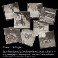 COLLECTION – Circa 1924 –  Photo collection from England – Possibly Mrs David Wagstaff of Ledgeland Kennels – USA