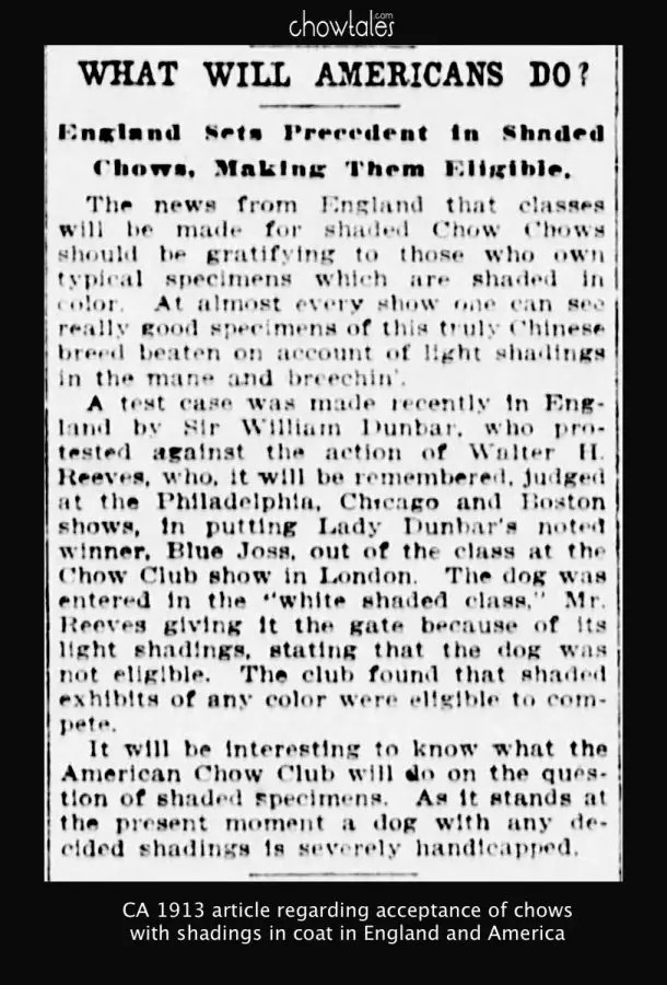 1913-usa-article-shaded-chows-in-england-5595