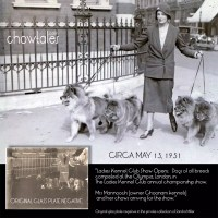 1931 Mrs V.A. Mannooch of Choonam kennels with 5 beautiful chows .  Glass plate negative