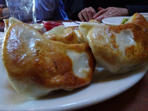 Pot Stickers (view of the crispy bottom)
