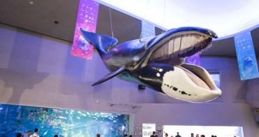 親子出遊必推景點 日本中部旅遊魅力無限 三重鳥羽水族館
