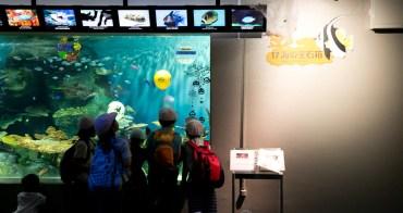 品川水族館 東京都心內最佳生命教育  親子遊東京