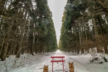 冬季限定雪原散策 專業嚮導帶領 小岩井農場 勝利之道