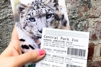 Central Park Zoo 紐約客解憂秘密基地 中央公園動物園 紅貓熊超搶鏡