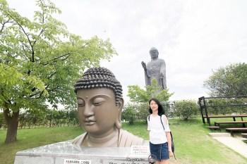台灣之光在日本 金氏世界紀錄 世界最高青銅像 120公尺高牛久大佛陀