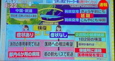 這口罩才能防流感武漢病毒 日本口罩價格十倍起跳 來日本買口罩應注意關鍵字『VFE』『ウイルス』