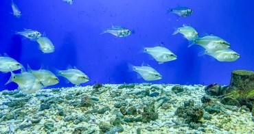 野柳海洋世界 端午連假四天特別活動 2020旅遊補助方案
