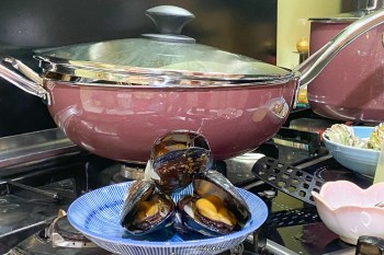 一鍋到底 馬祖淡菜輕鬆上菜大勝米其林餐廳 WMF Fusiontec 炒鍋太實用快搶