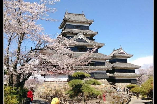 長野松本城 日本賞櫻三大名城 剛強與柔美並存