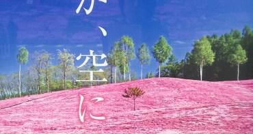 北海道芝櫻 Moss Phlox 道東滝上芝櫻公園,打翻粉紅色顏料罐的人是誰?芝櫻冰淇淋鹹甜香味真難忘