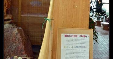 (日本富山縣) 日本職棒的秘密武器大公開 日本第一 富山縣南砺市福光地區產野球棒