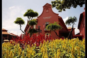 (馬來西亞) 熱帶花朵真稀奇