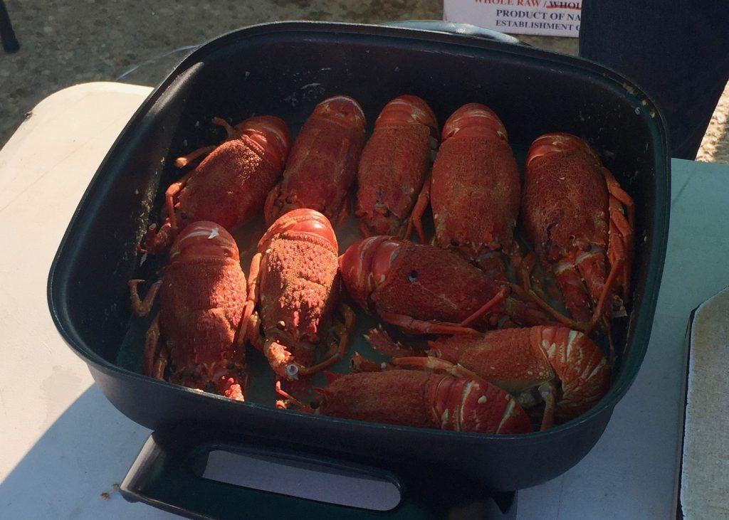 10th Annual Crayfish Festival in Lüderitz