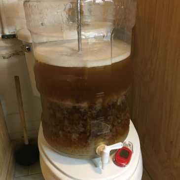 The Trials and Tribulations of the Modern Homebrewer