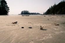 Vancouver Island - Part 2-10