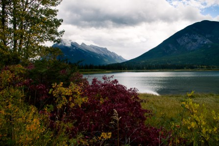 Bow Valley Parkway-11