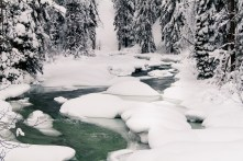 Manning Park at Christmas-45