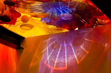 chihuly-3