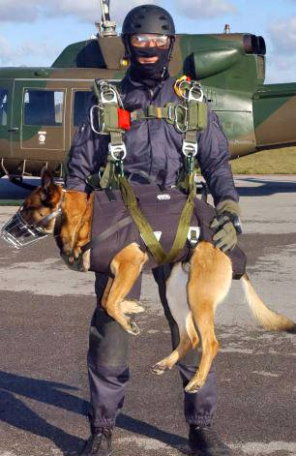 Dogs of the Navy SEALs