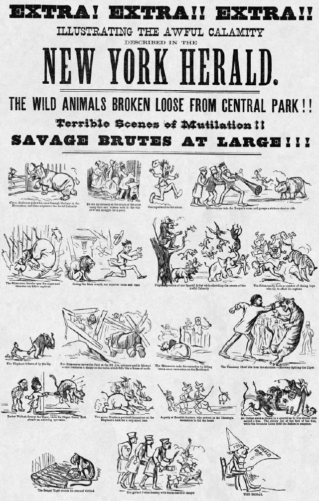 NY Herald Zoo Escape 1874