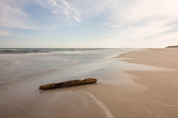 Baumstumpf am Strand - Sandhammaren