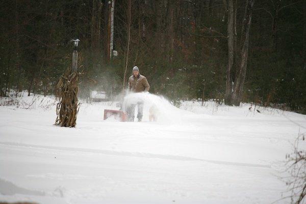 snowblowingdog (1)