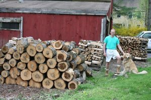 andy wood columbus