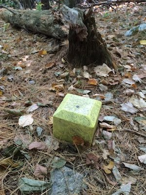 oldindiantrail - marker