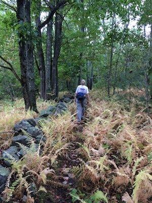 midstate-trail-leg2-6