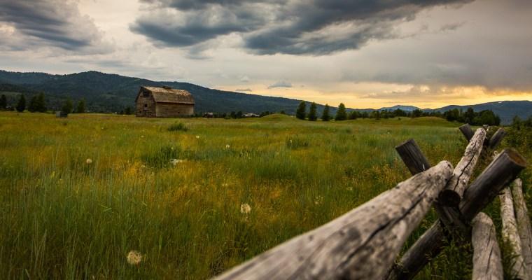 Idahoan Fields