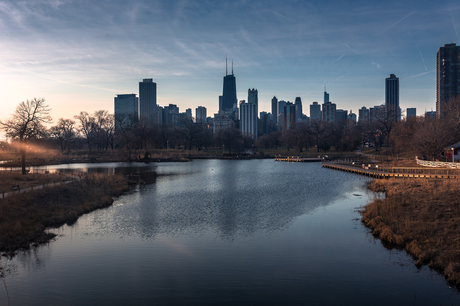 Morning in Lincoln Park