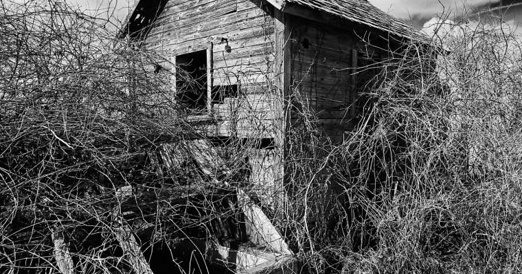 Abandoned Americana No. 15