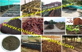 New Agro-Business in Nigeria | Vermi-compost Organic Fertilizer Production| Business plan