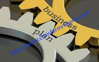 Business Feasibility Study and A Business Plan
