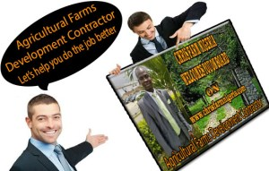 Top Feasibility Study Plus A Business Plan Writer For Any Business Loan/Grant