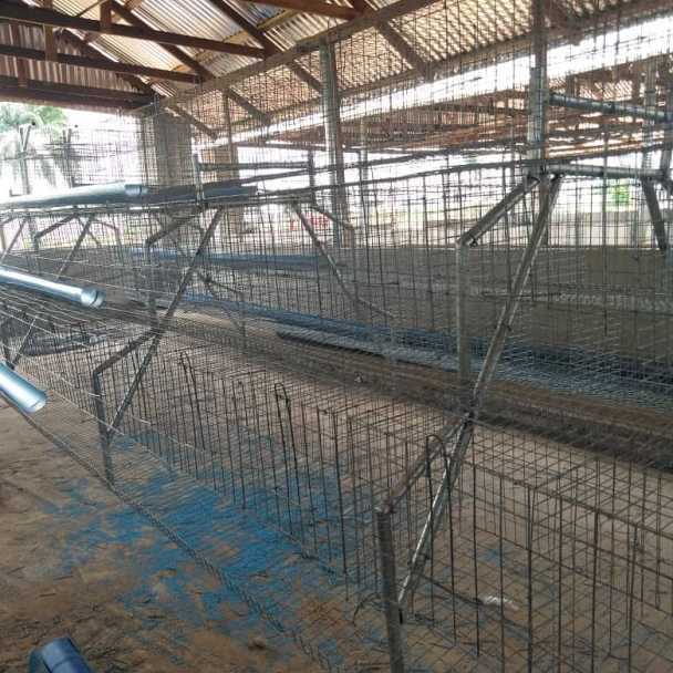 Poultry Battery Cage Repairers