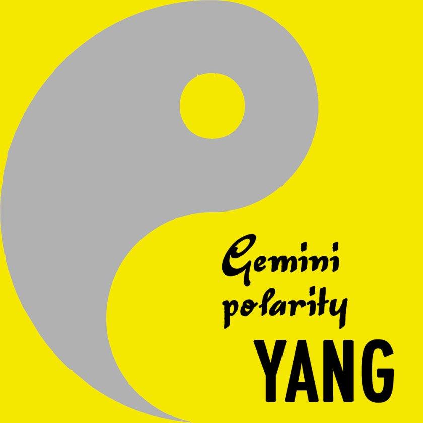 Gemini-polarity-yang