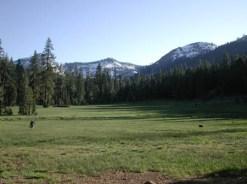 mumford-meadow-vista
