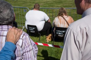Wragby Show