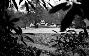 Kinema in the Woods – The Independent